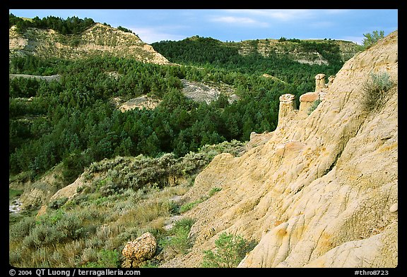 Rain Pillars, Caprock coulee trail, North Unit. Theodore Roosevelt National Park (color)