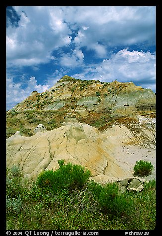 Colorfull badlands, North Unit. Theodore Roosevelt National Park (color)