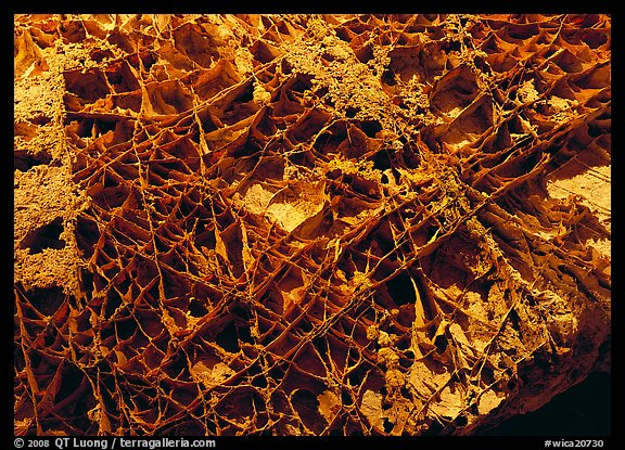 Boxwork ceilling cave formation. Wind Cave  National Park (color)