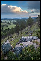 Rankin Ridge and cumulonimbus cloud in late afternoon. Wind Cave National Park, South Dakota, USA. (color)