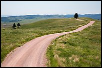 Unpaved road. Wind Cave National Park, South Dakota, USA.