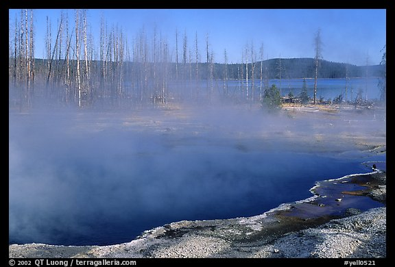 Pools, West Thumb geyser basin. Yellowstone National Park (color)
