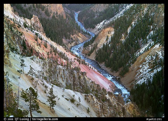 River and Walls of the Grand Canyon of Yellowstone, dusk. Yellowstone National Park (color)