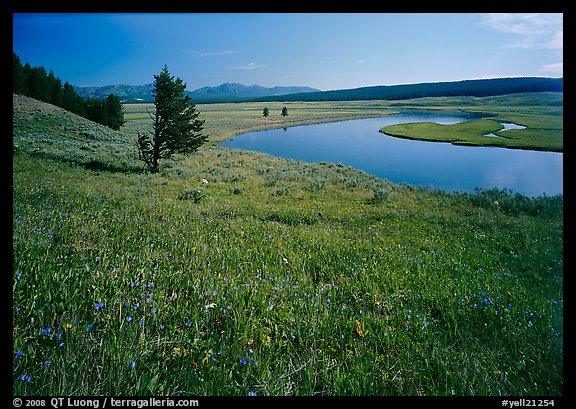 Bend of the Yellowstone River, Hayden Valley. Yellowstone National Park (color)