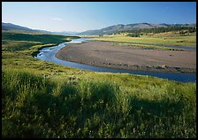 Meadow and river in wide Lamar Valley. Yellowstone National Park, Wyoming, USA. (color)