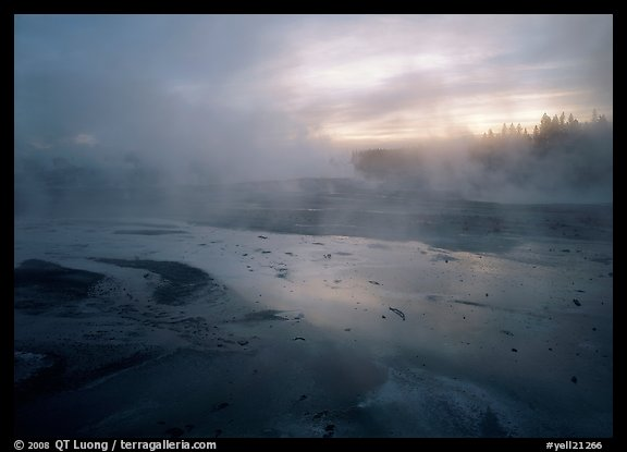 Steam in Norris Geyser Basin at dawn. Yellowstone National Park, Wyoming, USA.