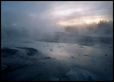 Steam in Norris Geyser Basin at dawn. Yellowstone National Park ( color)