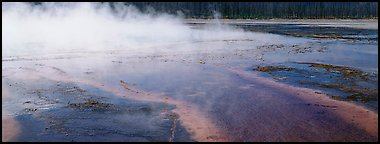 Steam rising from multi-colored thermal springs. Yellowstone National Park (Panoramic color)