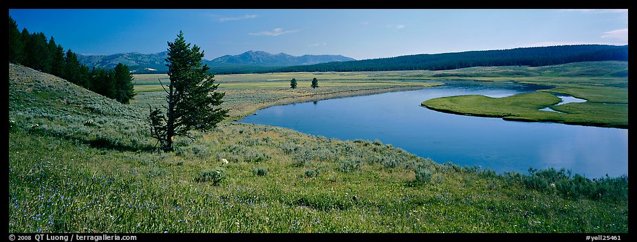 River and verdant meadows. Yellowstone National Park (color)