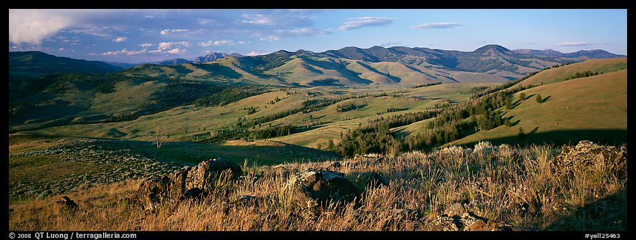 Hills in summer. Yellowstone National Park (color)