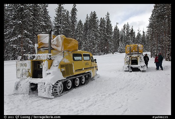 Snowcoaches on snow-covered road. Yellowstone National Park (color)