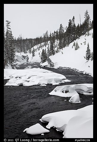 Lewis River and falls, winter. Yellowstone National Park (color)