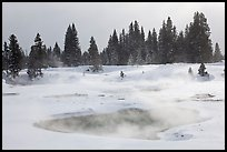 Steam rising from pool in winter, West Thumb. Yellowstone National Park, Wyoming, USA. (color)