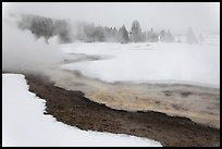 Upper Geyser Basin in winter. Yellowstone National Park, Wyoming, USA.