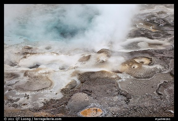 Hot springs detail. Yellowstone National Park, Wyoming, USA.