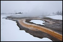 Mirror Pool, snow and steam. Yellowstone National Park, Wyoming, USA.