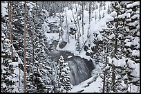 Snowy forest and Kepler Cascades. Yellowstone National Park ( color)