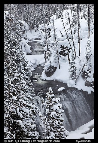 Kepler Cascades of the Firehole River in winter. Yellowstone National Park (color)