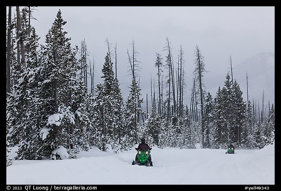 Snowmobiles. Yellowstone National Park (color)