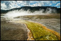 Water runoff from hot springs, Biscuit Basin. Yellowstone National Park ( color)