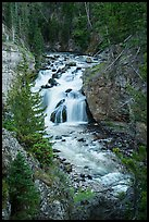 Firehole Falls. Yellowstone National Park ( color)
