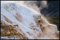Flow over travertine, Canary Springs. Yellowstone National Park ( color)