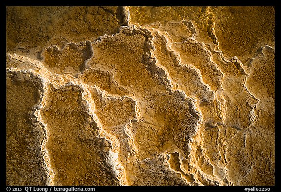 Travertine terrace detail, Mammoth Hot Springs. Yellowstone National Park (color)