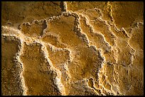 Travertine terrace detail, Mammoth Hot Springs. Yellowstone National Park ( color)