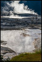 Backlit steam and pool, Main Terrace, Mammoth Hot Springs. Yellowstone National Park ( color)