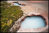 Turquoise mudpots, Artist Paint Pots. Yellowstone National Park ( color)