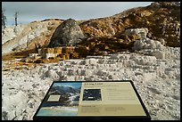 Living Color interpretive sign, Mammoth Hot Springs. Yellowstone National Park ( color)