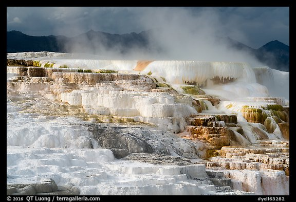 Active terraces at Canary Springs, steam, and mountains. Yellowstone National Park (color)