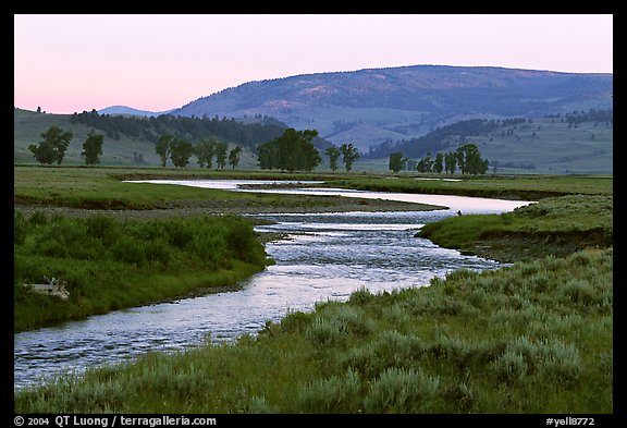 Soda Butte Creek, Lamar Valley, dawn. Yellowstone National Park (color)