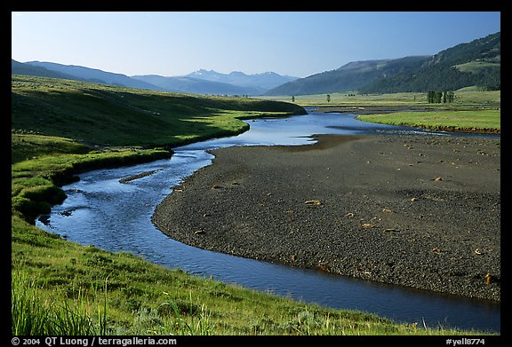 Lamar River, Lamar Valley, early morning. Yellowstone National Park (color)