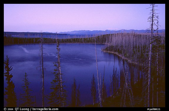 West Thumb at dusk. Yellowstone National Park (color)