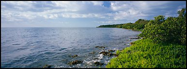 Island Altantic shoreline. Biscayne National Park (Panoramic color)