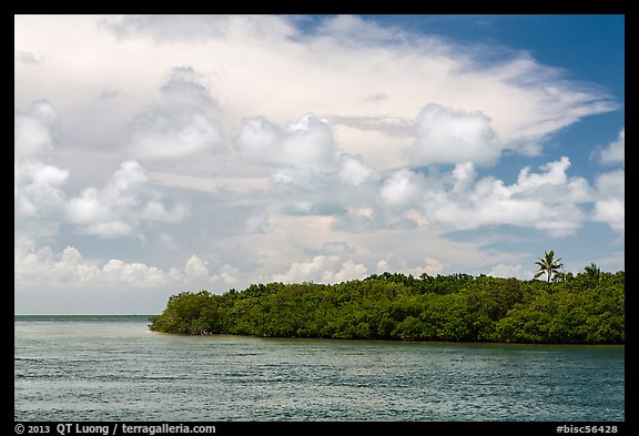 Adams Key, Biscayne Bay, and summer clouds. Biscayne National Park (color)