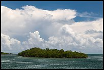 Mangrove islet in Caesar Creek and Atlantic Ocean. Biscayne National Park, Florida, USA. (color)
