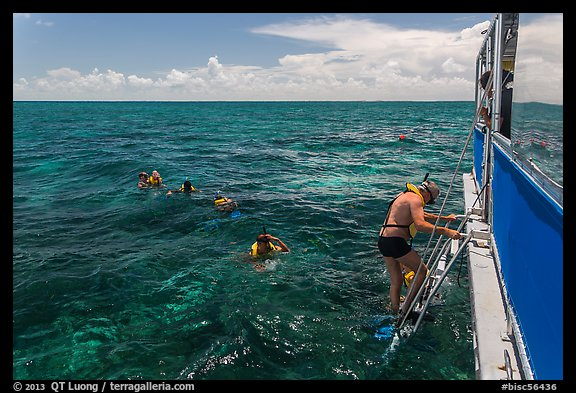 Snorkeling boat, snorklers and reef. Biscayne National Park (color)