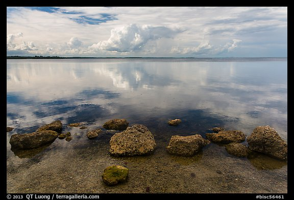 Rocks and Biscayne Bay reflections. Biscayne National Park (color)