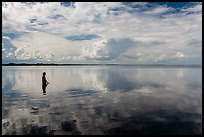 Park visitor looking, standing in glassy Biscayne Bay. Biscayne National Park ( color)