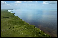 Aerial view of mainland mangrove coast. Biscayne National Park ( color)