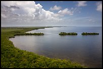 Aerial view of mainland coast near Convoy Point. Biscayne National Park ( color)