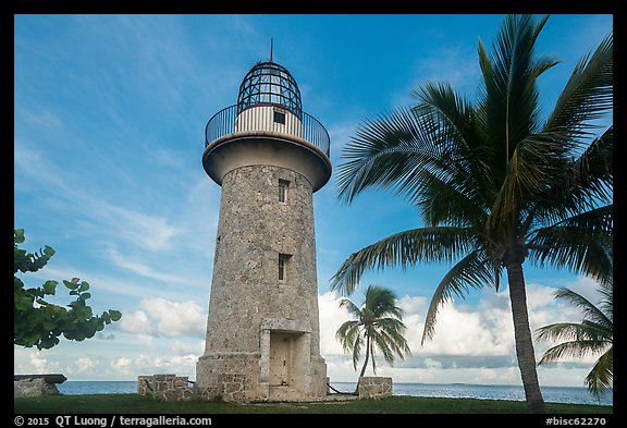 Palm tree and lighthouse, Boca Chita Key. Biscayne National Park (color)