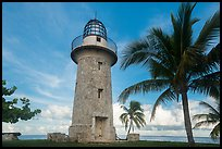 Palm tree and lighthouse, Boca Chita Key. Biscayne National Park ( color)