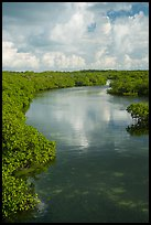 Channel. Biscayne National Park ( color)