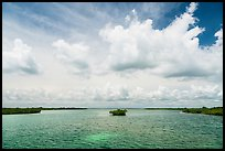 Channel with mangrove islet. Biscayne National Park ( color)