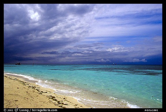 Beach and turquoise waters, Garden Key. Dry Tortugas National Park (color)