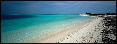 Deserted tropical beach with turquoise water. Dry Tortugas National Park (Panoramic color)
