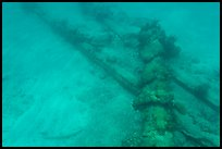 Part of Windjammer wreck on ocean floor. Dry Tortugas National Park, Florida, USA. (color)